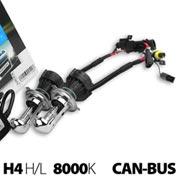 215.03.033207-AMPUL XENON H4 H-L 12V 8000K CANBUS 2'Lİ