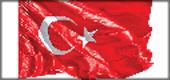 220.10-TÜRK BAYRAKLARI